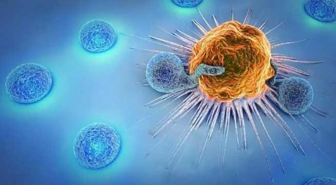 已经发现的癌症,要怎么对抗?