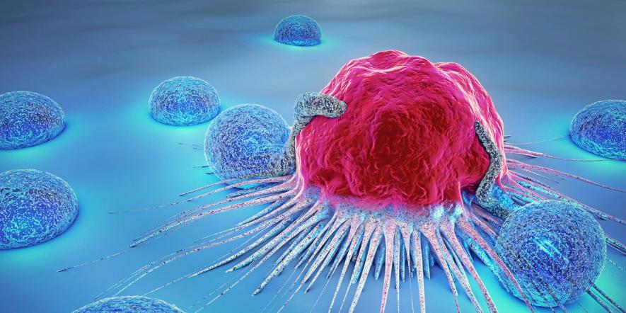 癌症的治疗方案都有什么?