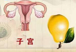 女性如何预防子宫衰老