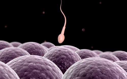 北京男性不孕不育治疗那家比较好